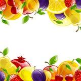 Banner of fresh fruit Royalty Free Stock Photo