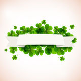 Banner. Fresh green leafs clover with ribon. Stock Photos