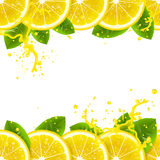 Banner with fresh lemons royalty free illustration