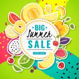 Banner fruit. Poster fresh food juice summer fruits offer sale discount price flyer card text colorful frame cartoon royalty free illustration