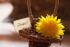 Banner with the german word Danke Royalty Free Stock Photography