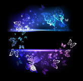 Banner with glowing butterflies Stock Photo