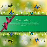 Banner with grass and flowers Stock Images