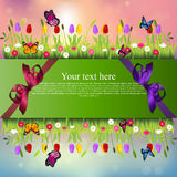 Banner with grass and flowers Royalty Free Stock Image