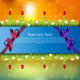 Banner with grass and flowers Stock Image