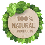 Banner with green leaves Royalty Free Stock Photos