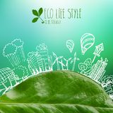 Banner with green leaves and doodles Royalty Free Stock Images