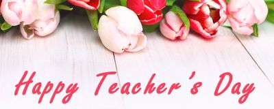 Banner. Happy teachers day with tulip flower, message for teacher in special day of education, tulip bouquet.