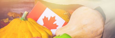 Banner. Happy Thanksgiving Day in Canada. Vegetables, pumpkins, squash, apples, maple and oak leaves, acorns on a wooden backgroun. Happy Thanksgiving Day in royalty free stock photo