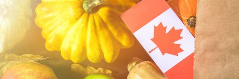 Banner. Happy Thanksgiving Day in Canada. Vegetables, pumpkins, squash, apples, maple and oak leaves, acorns on a wooden backgroun. Happy Thanksgiving Day in stock image