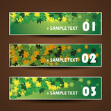 Banner or Header Design - Autumn Leaves. Set of Abstract Colorful Numbered Banners for Web and Design Template - Creative Illustration in Freely Scalable and Stock Photo