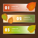 Banner or Header Designs - Autumn Leaves. Set of Abstract Colorful Numbered Banners for Web and Design Template - Creative Illustration in Freely Scalable and Royalty Free Stock Image
