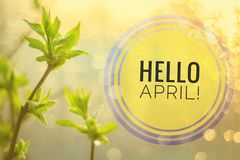Banner hello april. Hi spring. Hello April. Welcome card We are waiting for the new spring month. The second month of spring royalty free stock photo