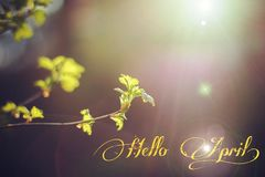 Banner hello april. Hi spring. Hello April. Welcome card We are waiting for the new spring month. The second month of spring stock photography