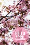 Banner hello april. Hi spring. Hello April. Welcome card We are waiting for the new spring month. The second month of spring stock photo