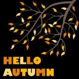 Banner hello autumn Stock Photo