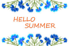 Banner Hello Summer. Cornflowers and the inscription hi the summer.Vector illustration, suitable for banner, greeting cards or congratulations on the wedding royalty free illustration