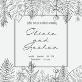 Banner with herbs, leaves and ferns. Frame with a leafy bouquet. Floral design elements. Vector illustration. Vintage style Stock Images