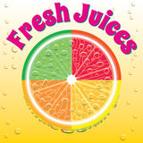 Banner for juice grapefruit, orange, lime, lemon Stock Images