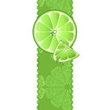 Banner with juicy slices of lime fruit Stock Photos