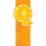 Banner with juicy slices of orange fruit Stock Images