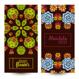 Banner with a kaleidoscope of succulents in style hand drawing. Royalty Free Stock Photography
