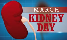 Healthy Kidneys Over Medical Exam and Sign for Kidney Day, Vector Illustration. Banner with kidneys over medical exam pattern and a loose-leaf calendar with Royalty Free Stock Photo