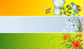 banner kwiat Zdjęcia Stock
