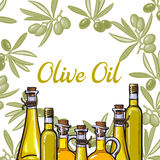 Banner, label with olive branches, oil bottles, place for text Royalty Free Stock Photo