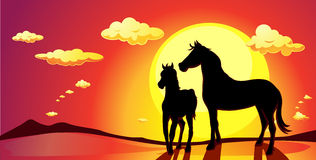 Banner landscape with horses in sunset - vector Stock Images