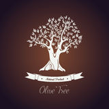 Banner or logo for olive oil tree with branch Stock Photos