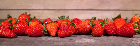 Banner, lots of fresh organic strawberries Royalty Free Stock Photography