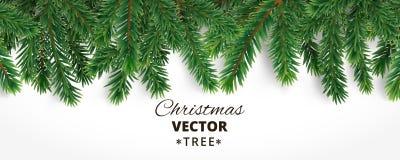 Banner met de vectortakken van de Kerstmisboom en ruimte voor tekst r vector illustratie