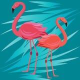 Banner met flamingo, het tropische ontwerp van de bladeren exotische bloem vector illustratie