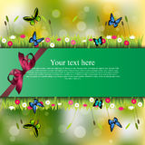 Banner met gras en bloemen Stock Foto's