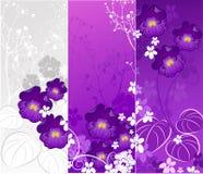 Banner met viooltjes Stock Illustratie