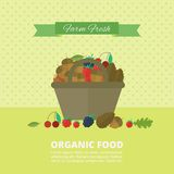 Banner with nuts and berries. Vector illustration Stock Images
