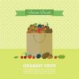 Banner with nuts and berries. Vector illustration. Banner with forest nuts and berries in package. Vector flat illustration. Concept organic food royalty free illustration