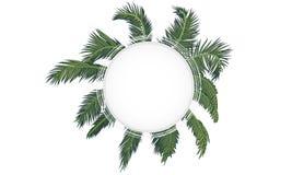banner op de achtergrond van palmtakken vector illustratie