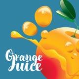 Banner with orange fruit and fresh juice splash Royalty Free Stock Photos