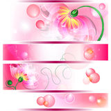 Banner with pink fairy flowers. 4 Banner with pink fairy flowers, bubbles and shinings Royalty Free Stock Photo