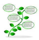 Banner plant Stock Images
