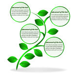 Banner plant. For text. This is file of EPS10 format Stock Photography