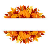 Banner with pumpkins and colorful autumn leaves. Vector eps-10. Stock Image