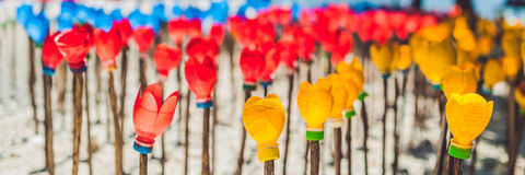 BANNER Flowers made from a plastic bottle. plastic bottle recycled. Waste recycling concept Long Format royalty free stock images