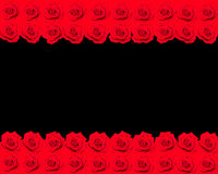 Banner of red roses Royalty Free Stock Images