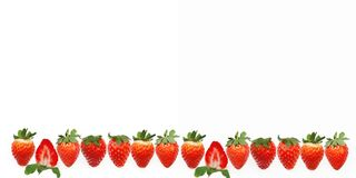 A banner with a row of fresh juicy whole and a half strawberries strawberries. A row of fresh juicy whole and a half strawberries strawberries Royalty Free Stock Image