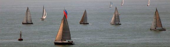 Banner of sailboats. Sailboats at the start of a regatta, banner size Royalty Free Stock Photo