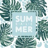 Summer sale poster with monstera deliciosa in realistic style with high details and modern flat elements. vector illustration