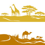 Banner with savanna and desert, silhouette Royalty Free Stock Photos